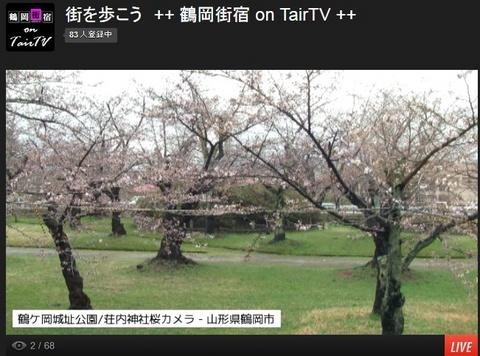 鶴ヶ岡城址公園(鶴岡公園)